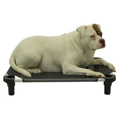 """Pet Cot Size: Large - 40"""" L x 30"""" W, Leg Color: Tan, Fabric"""