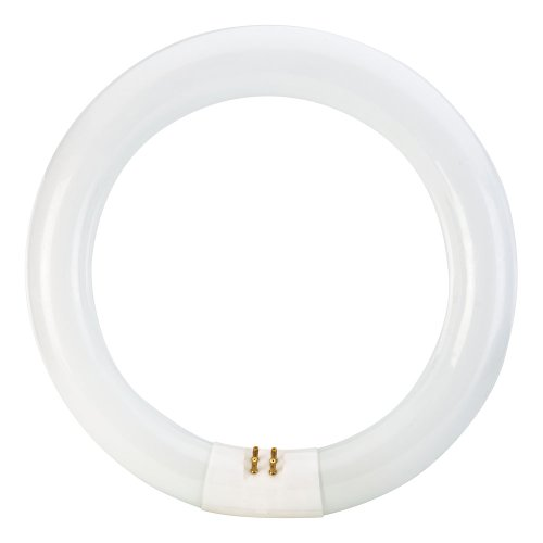 046677392352 - Philips 392357 Circline Fluorescent 22-Watt 8-Inch T9 Daylight Deluxe Light Bulb carousel main 1