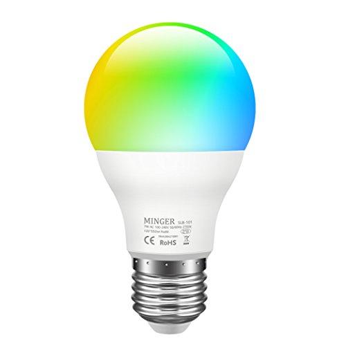 Multi Color Led Holiday Lights