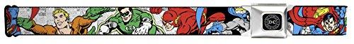 Justice League Superheroes Close-up Seatbelt Belt