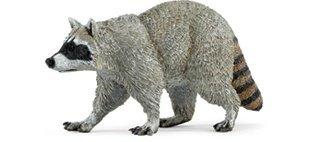 Safari Ltd Wild Safari North American Wildlife Raccoon (Raccoon Figurine)