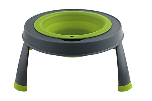 Dexas Popware for Pets Single Elevated Pet Feeder, Small, Gray/Green