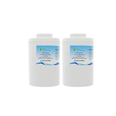 EcoAqua-EFF-6013A Refrigerator Water Filter Cartridge, 2-Pack
