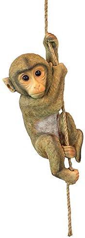 Design Toscano Chimpanzee Hanging Polyresin product image