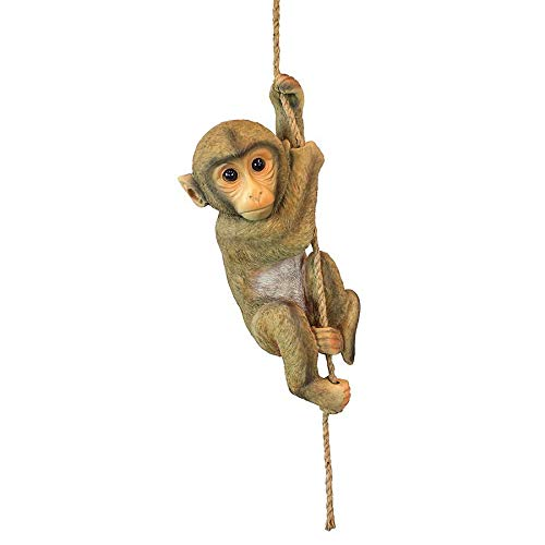 Design Toscano Chico the Chimpanzee Baby Monkey Hanging Animal Statue, 16 Inch, Polyresin, Full Color (Animal Outdoor Statues)