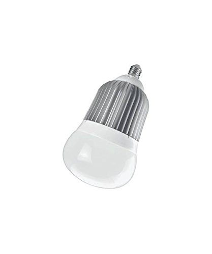 UPC 810055015993, Bulb Big Led 2570l Edison Base
