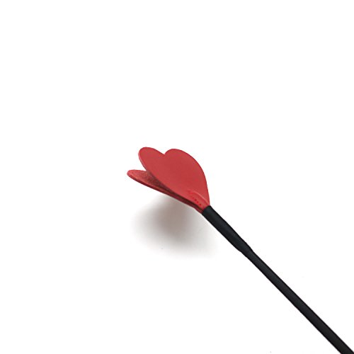 SCARLET KITTEN Riding Crop Horse Whip Spanking with Leather Slapper Heart Shape Jump Bat (Red)