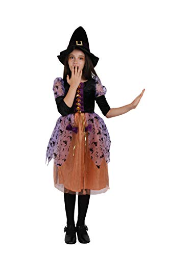 Witch Halloween Costume Girls Little Princess Child's Witch Costume (2-4, Princess) ()