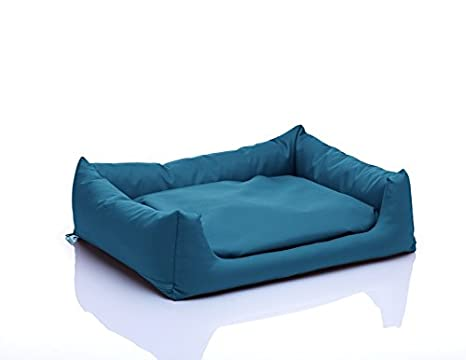 POLa cama para perros con cojín Reversible Perro sofá Dormir Espacio con desenfundable tamaño: S 50 x 60 Color: Turquesa nº 25: Amazon.es: Productos para ...