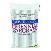 Barenbrug USA 22205 Ryegrass Grass Seed