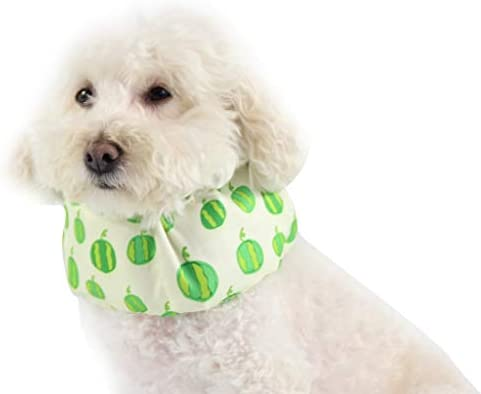 KCPer - Collar de verano para mascotas, diseño de frutas para ...