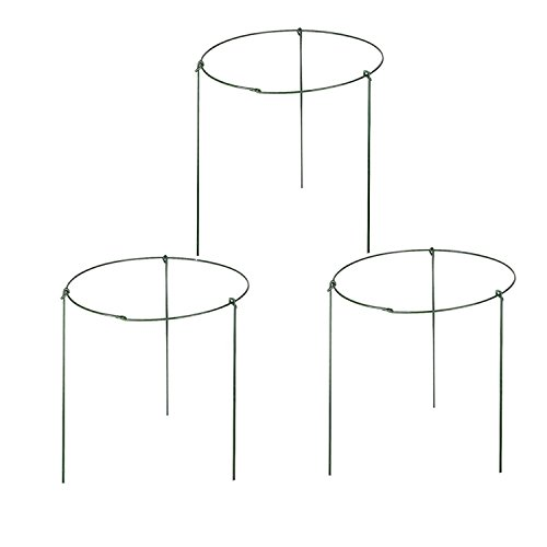 ( Pack of 3 ) Large Garden Plant Support Rings, 10