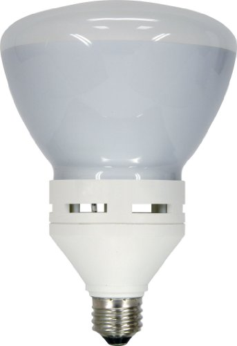 - GE Lighting 21716 Energy Smart CFL 26-Watt (100-watt replacement) 1260-Lumen R40 Floodlight Bulb with Medium Base, 1-Pack