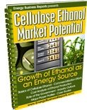Cellulose Ethanol Market Potential, Energy Business Reports, 1607256355
