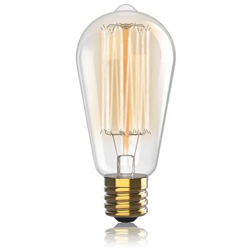 Hudson Lighting Vintage Antique Style Edison Bulb - 1 Pack - ST64 - Squirrel Cage Filament - 230 Lumens - 60 Watt - Dimmable - E26 Bulb Base - Classic Squirrel Cage Filament (Classic Lighting)