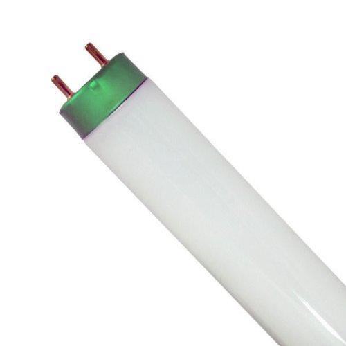 GE 10702 - F26T8/CW/4 - 26 in. - 19 Watt Fluorescent Tube - T8 - 4100K