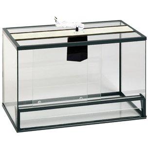 terrarium chorda aus glas 80 x 40 x 50cm 405572 g nstig bestellen. Black Bedroom Furniture Sets. Home Design Ideas