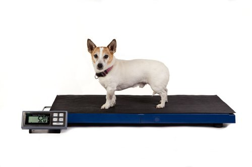 Veterinary Scale Precision Platform LC-VS 180 Large Lightweight Vet Scale Ideal for Vet Clinic Use, Accurate High Resolution Digital Pet Dog and Zoo Animal Weighing Scales with 0.05 Gram Resolution and 180 Kilogram Capacity, Portable for Ultimate Ease of Use in the Vet Surgery or Hospital, Zoo or the Field, the LC-VS 180 by Tree is the Perfect Combination of Quality, Economy, Large Capacity and Ease of Use for Small Animal and Large Domestic Animal Weighing.