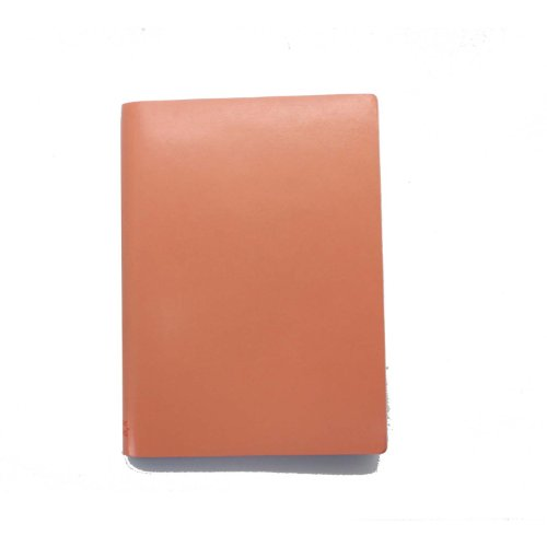 paperthinks-tangelo-orange-large-ruled-recycled-leather-notebook-45-x-65-inches-pt90302