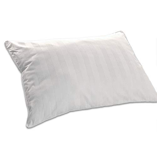 Blue Ridge Home Fashions 300 Thread Count Grey Down Pillow (Double Cover), Jumbo, White