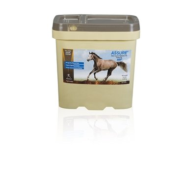 Assure Equine Digestive Aid 4.6 lb by Arenus