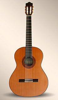 6P: Amazon.es: Instrumentos musicales