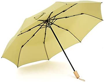 Color : B YAXY Compact Travel Umbrella UV Sun Umbrella Compact 10 Ribs Folding Travel Umbrella Auto Open and Close Windproof Reinforced Canopy Ergonomic Handle Auto Open Close Umbrella