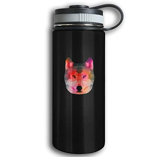 - Kkidj Ooii Colorful Stone Dog Statue 17oz Stainless Steel Vacuum Insulated Water Bottles for Outdoor Sport