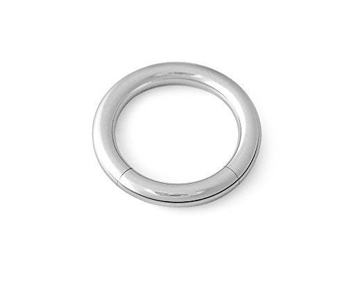 316L Surgical Steel Segment Captive Ring CBR 6g 3/4 -