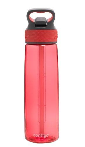 Contigo AUTOSPOUT Straw Addison Water Bottle, 24oz, Watermelon