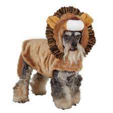 Top Paw Brown Lion Pet Costume Xs -