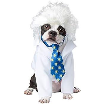 Amazon.com: Marty McFly - Disfraz de perro para el futuro ...