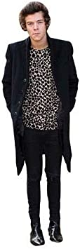 2013 Harry Styles Life Size Cutout
