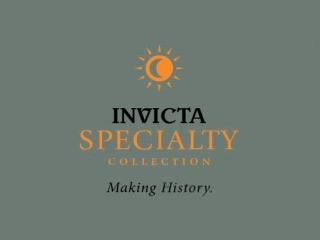 Amazon.com: Invicta Mens 3461 Specialty Collection Dual Time Watch: Invicta: Watches