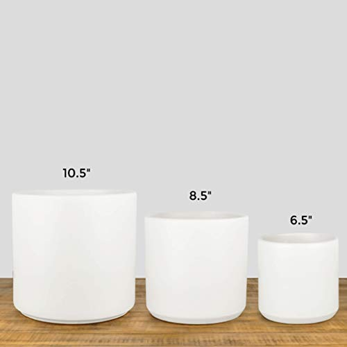 Indoor Flower Pot | Large Modern Planter, Terracotta Ceramic Plant Pot - Plant Container Great for Plant Stands (10.5 inch, White) by Peach & Pebble (Image #4)
