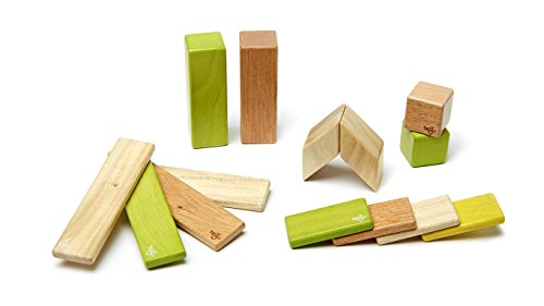 Tegu 14 Piece Magnetic Wooden Block Set, (Year Old Vines)