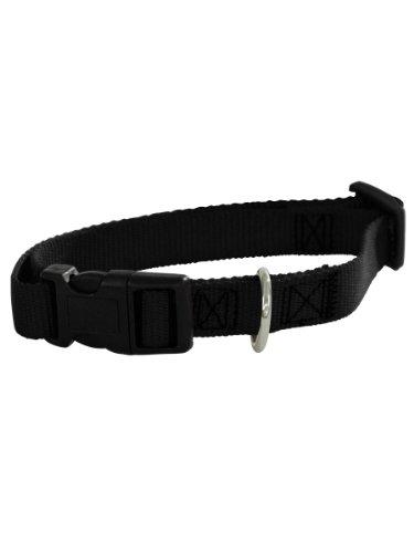 Guardian Gear Nylon Adjustable Dog Collar with Plastic Buckles, 3/8-Inch, Black, My Pet Supplies