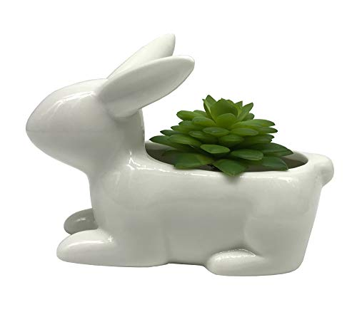 Cuteforyou Cute Cartoon Animal Bunny Shaped Ceramic Succulent Cactus Vase Flower Pot - White (Plant Not Included)