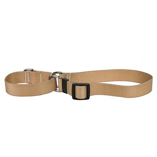Yellow Dog Design Tan Simple Solid Martingale Dog Collar-Size Medium-1
