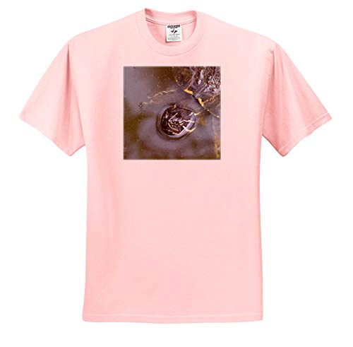 Susans Zoo Crew Animal - Florida River Cooter Turtle Head - T-Shirts - Light Pink Infant Lap-Shoulder Tee (12M) (ts_294135_72)
