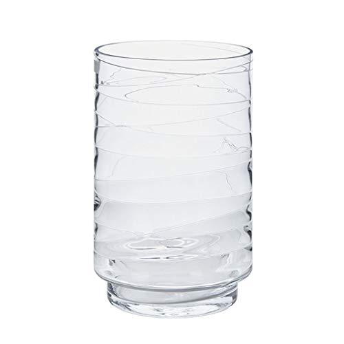 C Vase GAOLILI de Fleur de Simulation de en Verre Transparent de modèle Minimaliste Moderne (Couleur   C)