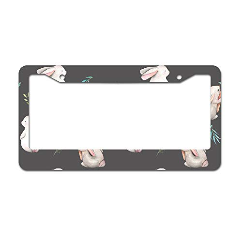 DKISEE Abstract Whimsical Bunnies License Plate Frame Aluminum Car License Plate Covers with 2 Holes 12