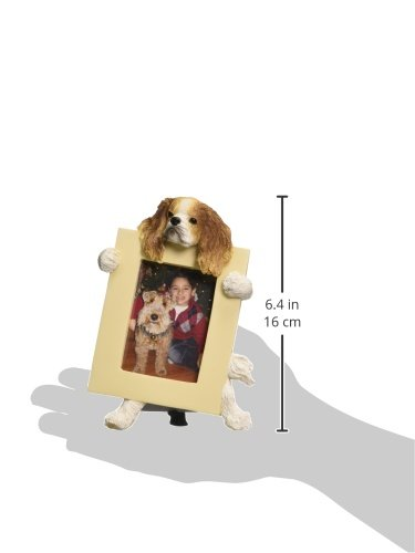 Cavalier-King-Brown-Charles-Spaniel-25-x-35-Picture-Frame