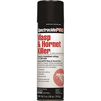 Amazon com : SpectracidePRO Wasp & Hornet Killer (Aerosol) (HG-30110