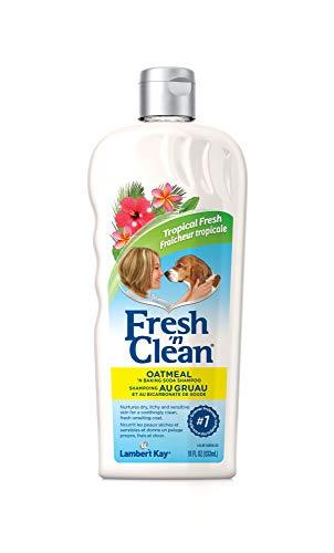 Fresh n Clean Oatmeal & Baking Soda Shampoo, 18 - Shampoo Dog Kay Lambert