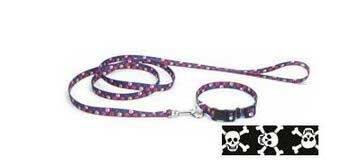 Coastal Pet Products DCP464SKZ Nylon Pet Attire Patterned Dog Training Leash, 5 8-Inch by 4-Feet, Skulls