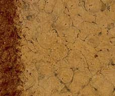 Kichler 337008CTO Ceiling Fan Flush Mount Kit, Canyon Stone Finish