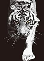 The 3D Art Company- Black and White Cats 3D Art Picture, 3D Lenticular Posters, Artwork Posters, Unique Wall Décor, Rare Art Decorations With Dozens to Choose From!