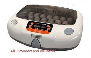 R-Com RCOM Max 20 MX20 Fully AUTOMATIC Digital Egg INCUBATOR