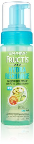 Garnier Fructis Hydra Recharge Moisture Whip Leave-In Treatment for Dry Hair, 5 Fluid - Hydra Moisture